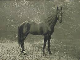 hans 1910