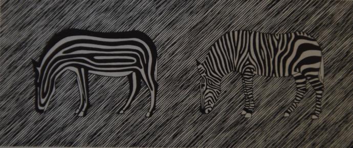 stripes zebras hamiltonmarler