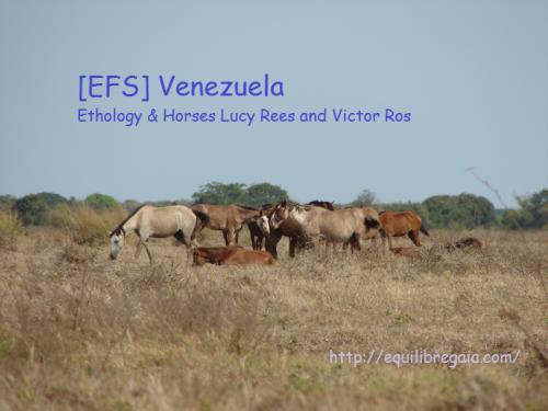 EFS Venezuela