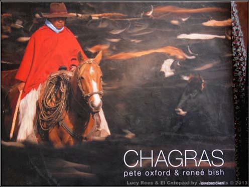 caballos paramo1