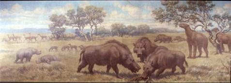 Miocene Plains Mammals, Cenozoic era. Long-necked camel Oxydactylus; two-horned rhinoceros Menoceras; three-toed horse Parahippus; giant pig Dinohyus; mammal with claws, Moropus.