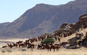namibia WE3