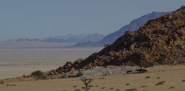namibia WE5