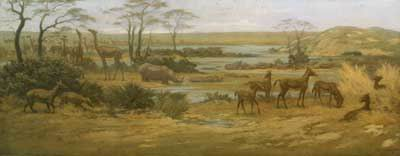 Rhinoceros,_Camels_and_Horses,_Miocene_Period