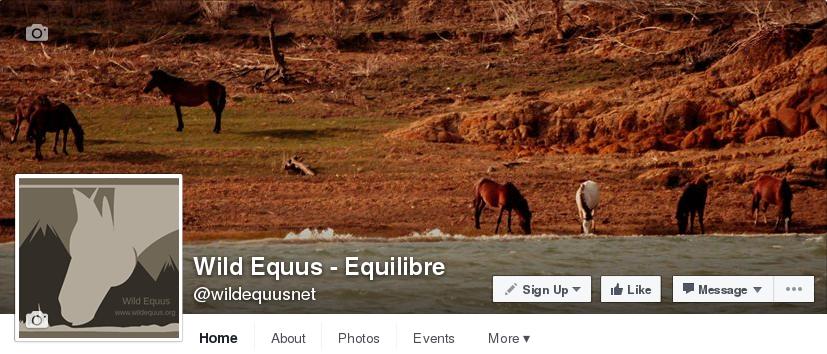 Wild Equus - Equilibre 2016-07-28 13-17-26